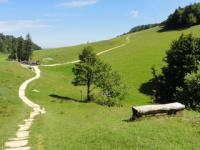 LES DRAILLES DE L'HISTOIRE - Guide Rhône-Alpes